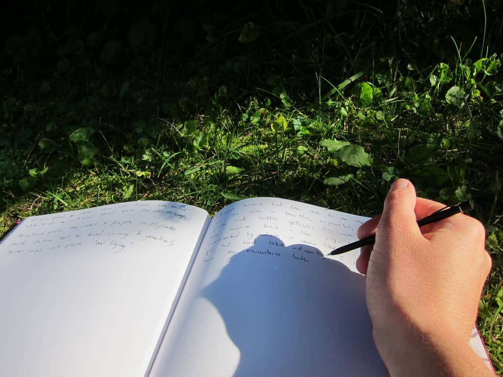 A woman's hand writing in her journal. Having a journal with your friend.