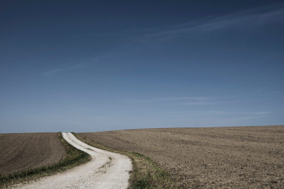 dirt road in a field disappearing into the horizon of a blue sky